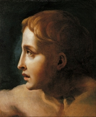 Study of the Head of a Youth